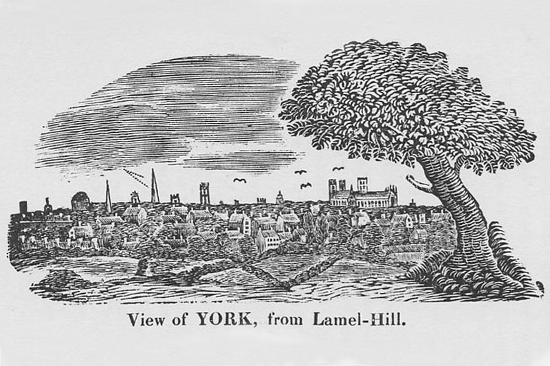 Image: Sketch of York from Lamel Hill (now the grounds of The Retreat)