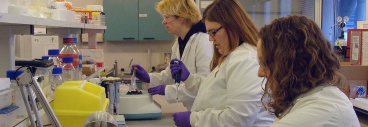 A typical preparation laboratory in Bioarch