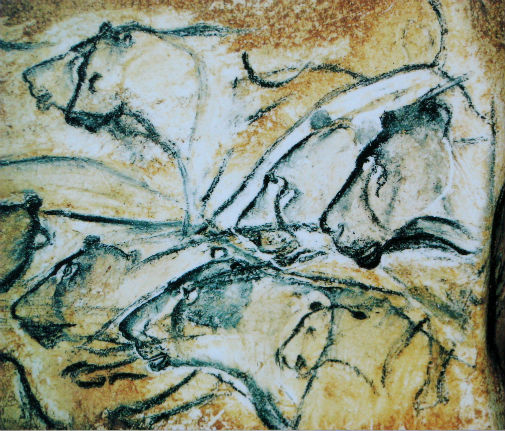 Detailed illustrations of lions painted in the Chauvet Cave. Wikimedia Commons