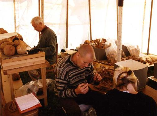 Don Brothwell sorting charnel from the excavations in St Colman's Church, Portmahomack