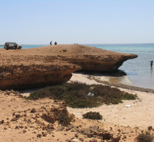 Shell mounds on east side of Janaba Bay, Farasan Islands, Saudi Arabia