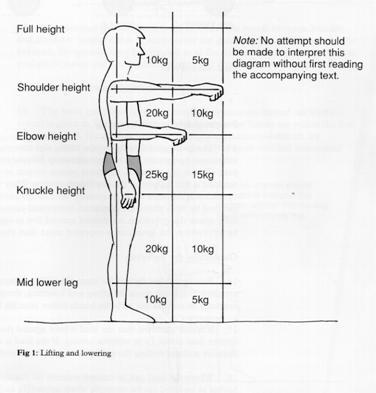 manual handling information for current staff students the rh york ac uk Manual Handling Poster Manual Handling Correct Methods