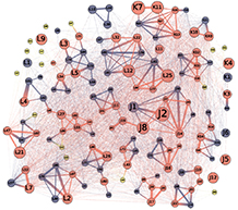 A social network of interactions among resident killer whales.