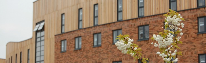 banner image of Langwith taken April 2012