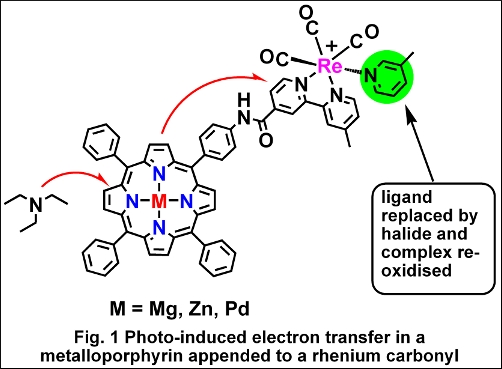 Photo-induced electron transfer in a metalloporphyrin appended to a rhenium carbonyl