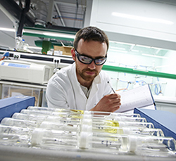 Researcher analysing samples in the lab