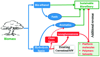 Levoglucosenone and cleaner lignin from waste biorefinery hydrolysis lignin by selective conversion of residual saccharides.