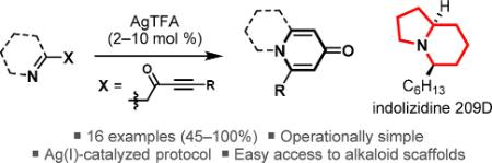 Ag(I)-Catalyzed Synthesis of Azabicyclic Alkaloid Frameworks from Ketimine-Tethered Ynones: Total Synthesis of Indolizidine 209D