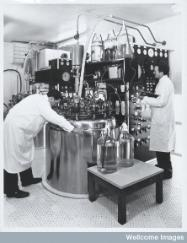Large scale manufacture of vaccine (Wellcome Library, London)