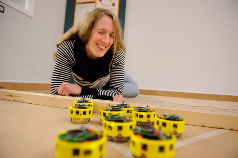York Robots Swarm At Official Opening News And Events The
