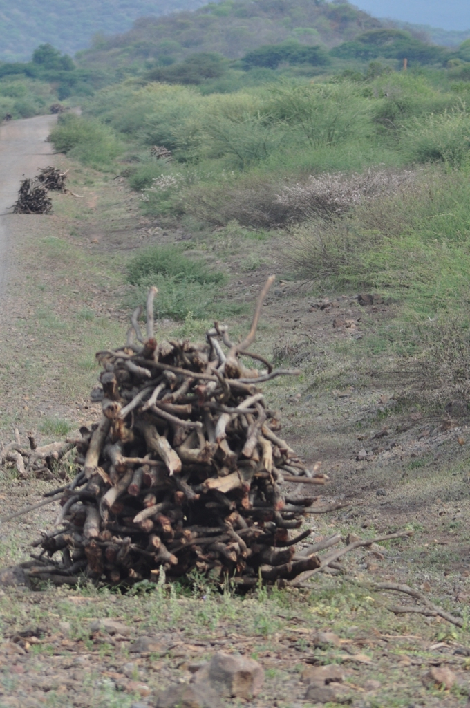 Image: Wood for sale at the Roadside in Ethiopia
