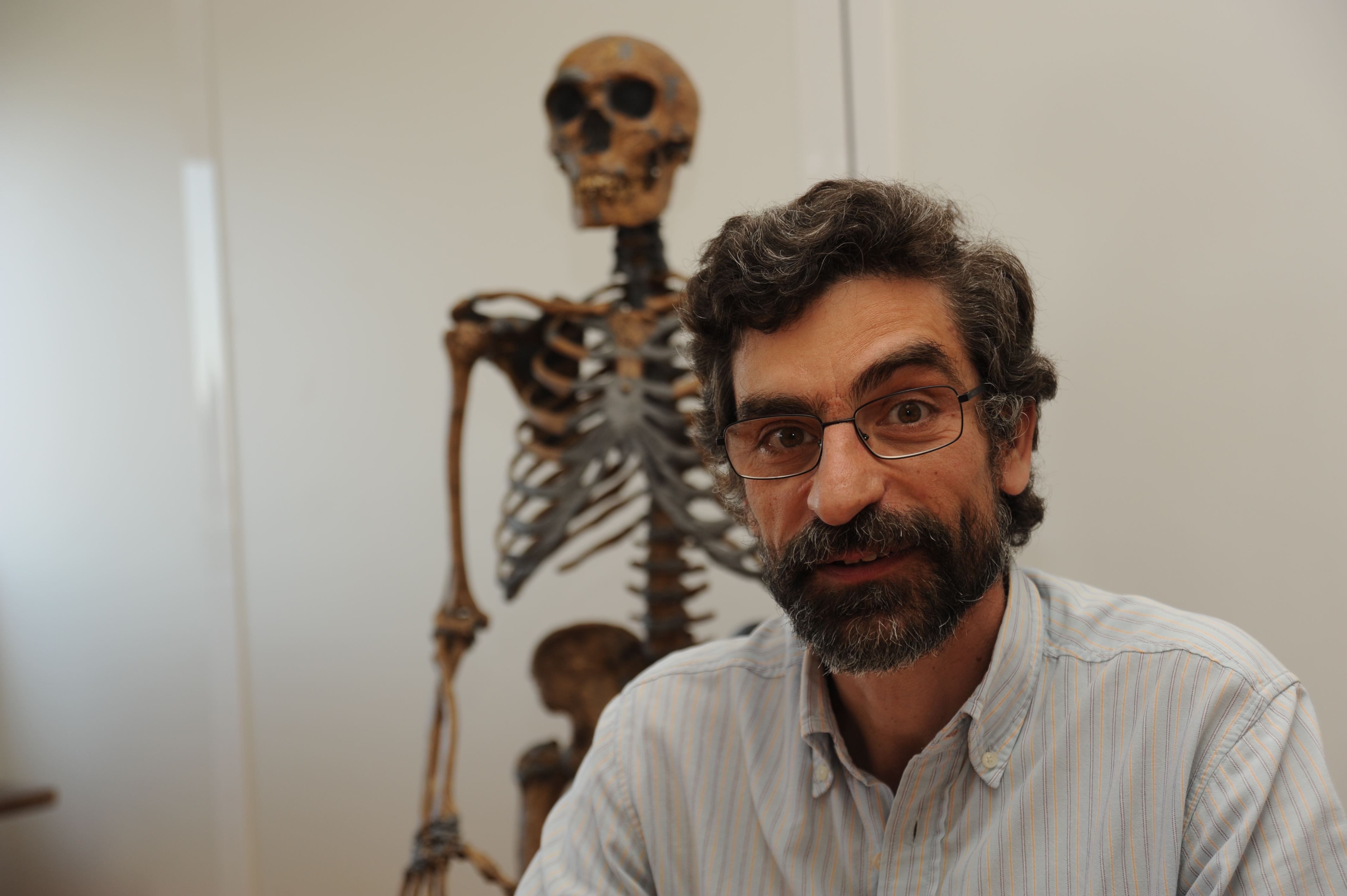 Image: Antonio Rosas, Paleoanthropology Group, Department of Paleobiology, Museo Nacional de Ciencias Naturales (CSIC), Madrid, Spain, with the remains of a Neanderthal skeleton. Credit: CSIC Comunicación