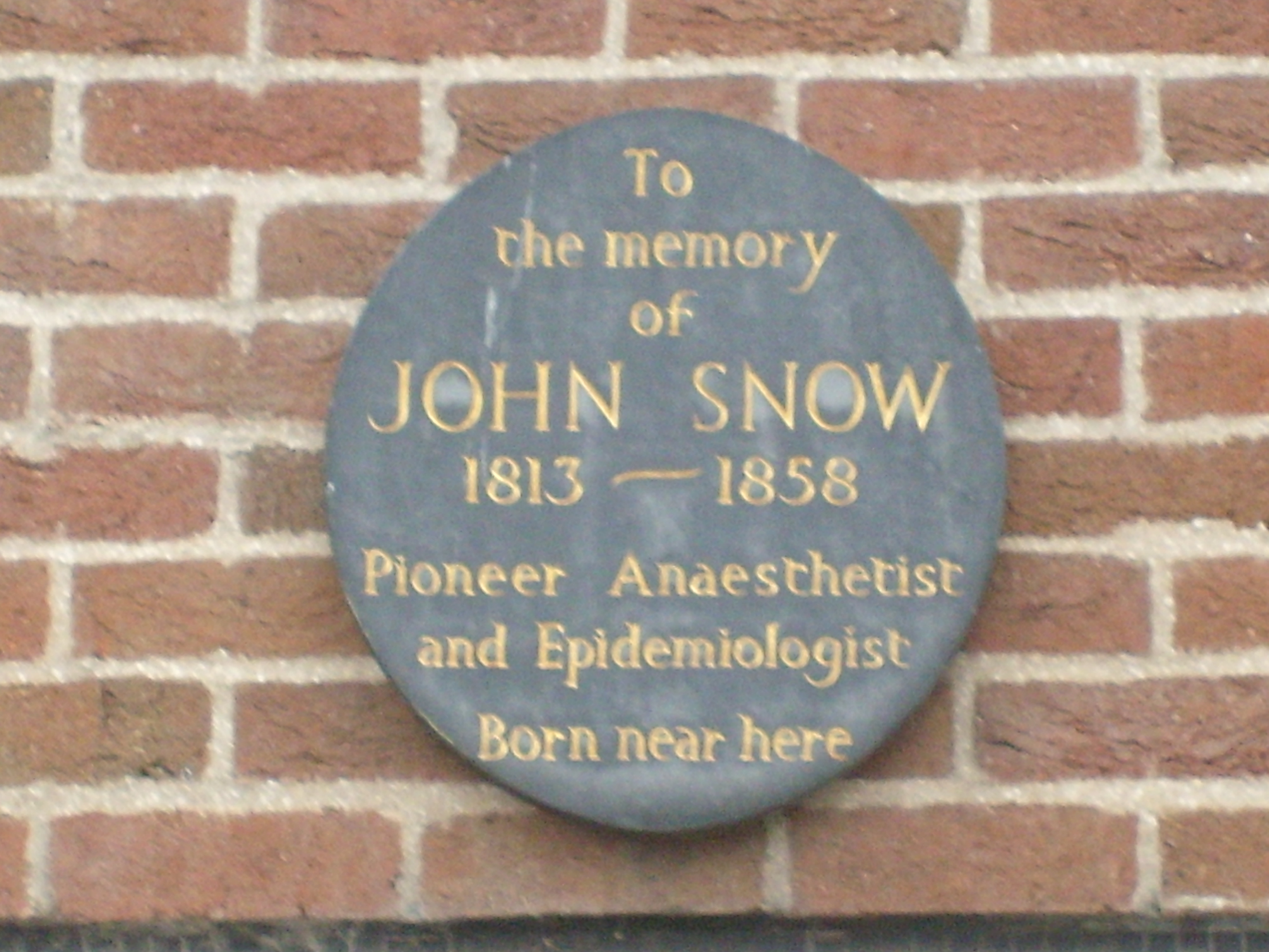 Image: Plaque in North Street in memory of John Snow. Credit: Sally Stephenson