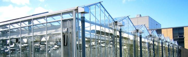 A range of specialist glasshouse and controlled environment facilities are available in the Department of Biology