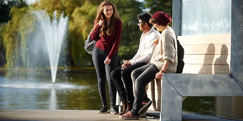 york university dating site is kerne dating nøjagtighed