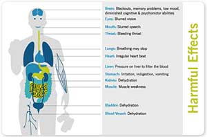 A picture of a part of the interactive media presentation created under the SCORe project. It features a diagram of the human body, labelled to show the problems of excessive alcohol consumption.