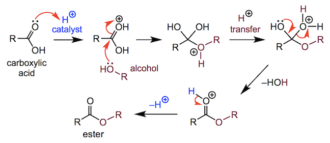 a nucleophilic acyl substitution reaction of a carboxylic acid with an alcohol to form an ester