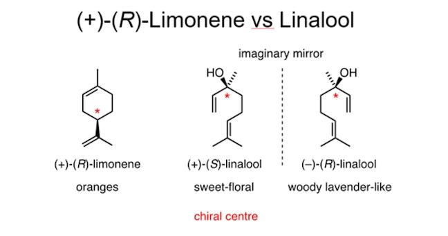 limonenevslinalool