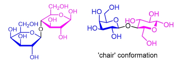 sugar conformations