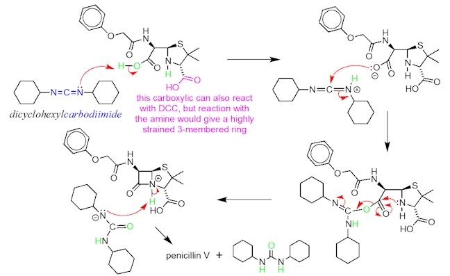 DCC reaction pathway