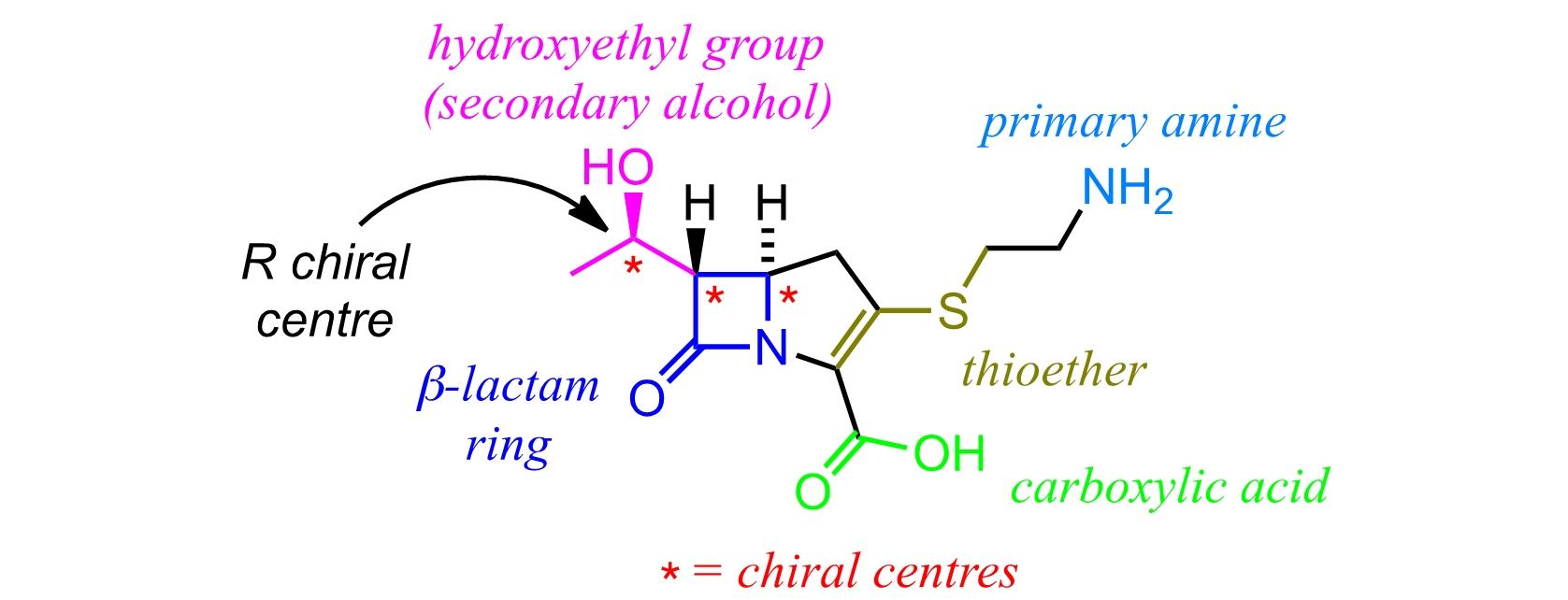 thienamycin