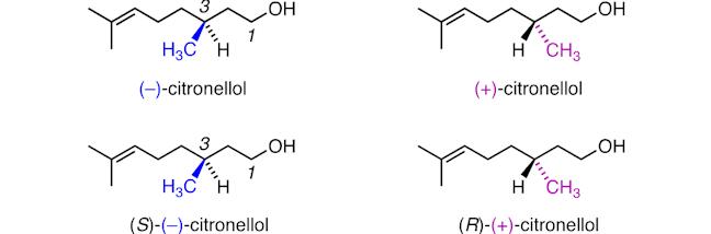 citronellol1