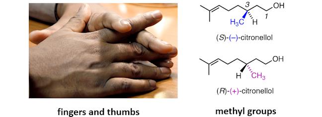 fingersandthumbs