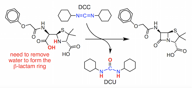 penicilloic acid precursor