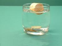 Science On The Shelves Eggsperiments